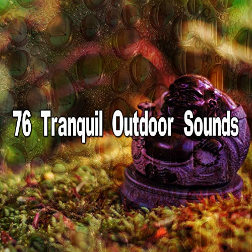 76 Tranquil Outdoor Sounds