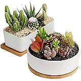 Sun-E Modern Style Marbling Ceramic Pot