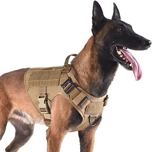 Top 10 Best tactical dog harness