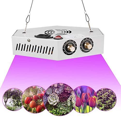 T6 1000W LED Pflanzenlampe Pflanzenlicht Einstellbare Vollspektrum Wachsen COB Grow Light mit Seilaufhänger für Zimmerpflanzen Gewächshaus Hydroponic Gemüse und Blumen