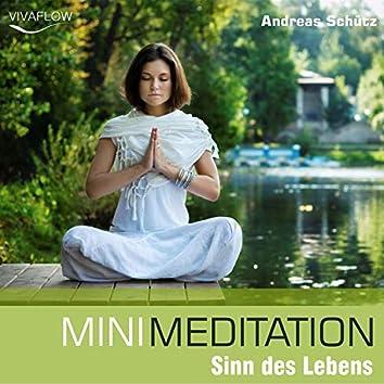 Mini Meditation - Sinn des Lebens (Entspannung, Abbau von Stress & Selbsterkenntnis)
