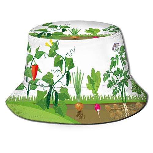RUEMAT Sombrero Pescador Unisex,Huerta Cocina Verduras Diferentes Verduras,Plegable Sombrero de Pesca Aire Libre Sombrero Bucket Hat para Excursionismo Cámping De Viaje Pescar