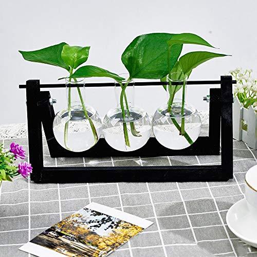 KnikGlass Hydroponische Vase Deko Holz Halter mit Hydroponik Glasvase Hängevase Blumenvase Tischvase Dekovase für Hydrokultur Pflanzen, Zuhause oder Büro Dekoration (Schwarz, 3 Vasen)
