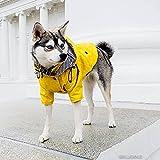 Ropa Para Perros Para Perros Pequeños Medianos Chubasquero Impermeable Para Cachorros Abrigo De Chaqueta De Perro Fresco De Moda Traje Para Perros A Prueba De Viento Suministros De Mascota(Size:4xl)