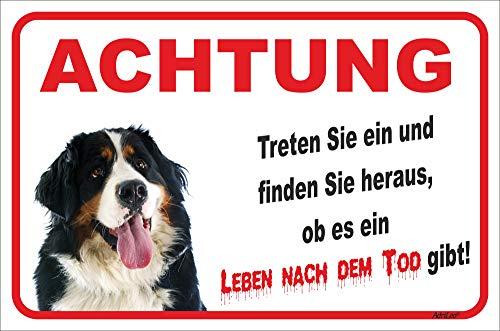 AdriLeo Schild - Vorsicht Berner Sennenhund - Leben nach dem Tod - (20x30cm) / Achtung Hund Wachhund