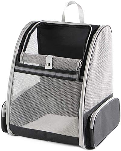 Pet Carrier Backpack for Dogs Cats - Large Mesh Transport Bag Foldable Transparent Good Ventilation with Wire Structure, Stable Rucksack Two-Sided Entry for Travel and Daily Use Airline Approved