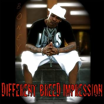 Different Breed Impression