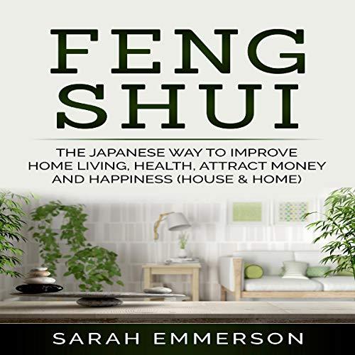 Feng Shui cover art