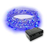 RTGS 60 LEDs String Lights Battery Operated on 20 Feet Long Silver Color Wire, Indoor and Outdoor with Waterproof Battery Box and Timer (Blue)