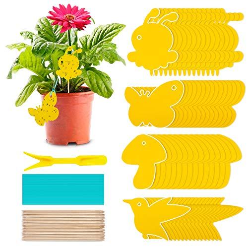 60Pcs Gelbsticker Fliegenfänger, Gelbtafeln Trauermücken Bekämpfen Zimmerpflanzen Topfpflanzen Gelbsticker, Wasserdicht Gelbfalle Mückenfalle Klebefalle für Fruchtfliegen Mücken Blattläuse Nematoden