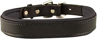 Perris Leather Padded Leather Dog Collar