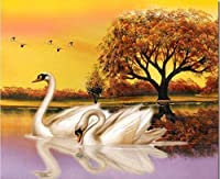 Embroidery Kit Cross Stitch Embroidery Swan Sunset Embroidery Crafts Beginner Handmade Needlework (11CT) Adult Kids Craft Gift Kit Furniture Decoration 40x50cm,Unique Home Decor