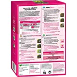 Zoom IMG-1 kb sementi evergreen facile veloce