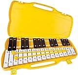 Immagine 1 performance percussion g4 a6 metallofono