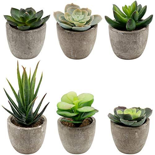 Foraineam 6 Pieces Assorted Potted Faux Succulent Decorative Artificial Succulent Cactus Cacti Plants