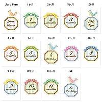 【ココサブ】月齢カード マンスリーカード マンスリーフォト 月齢フォト 月齢ステッカー a4サイズ 14枚1セット (リボン)