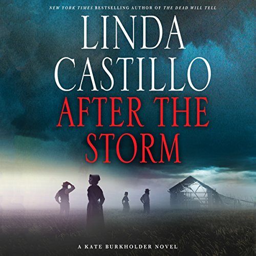 After the Storm Audiobook By Linda Castillo cover art