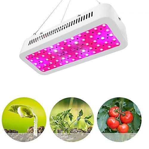 LiQinKeJi8 Crece la lámpara de Espectro Completo Que Crecen Luces for Plantas de Interior del Invernadero hidropónico Verduras y floración (Size : European Standard)