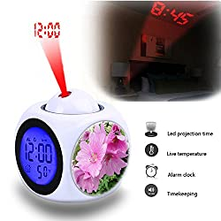 Projection Alarm Clock Wake Up Bedroom with Data and Temperature Display Talking Function, LED Wall/Ceiling Projection,Customize the pattern-646.Mallow, Lavatera olbia 'Rosea'