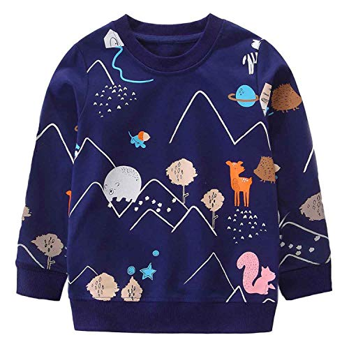 DHASIUE Little Boys Jumpers Baby...