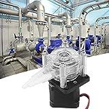 HYZXK Bomba peristáltica, Bricolaje 6-30 V Motor Paso a Paso de Flujo Grande Bomba dosificadora de Flujo Tubo Bomba de líquido peristáltica de vacío para Laboratorio de Acuario Analítica