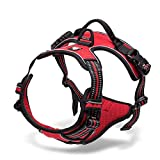 Chai's Choice Best Outdoor Adventure Dog Harness (Red Medium)