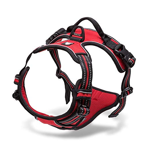 Chai's Choice - Premium Outdoor Adventure Dog Harness - 3M Reflective Vest with Two Leash Clips, Matching Leash and Collar Available (Red Medium)