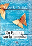 Un papillon sur la banquise: Roman (French Edition)