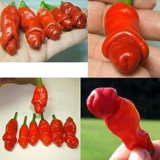 100 PC 9kinds de pimiento Semillas Semillas Vegetales Red Hot Chili Peppers pene de chile de rápido crecimiento Plantas de...