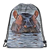 Hippopotamus Gym Sack Bag Drawstring Backpack Sport Bag for Men and Women School Travel Backpack 36 x 43 cm