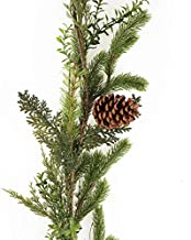 The Christmas Cart Fir and Pinecone Garland | Bannister Floral |Tree Accesory | 180cm Length | Christmas Floral | Décor