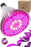 100W LED Grow Light Bulb - Full Spectrum Lamp for Indoor Plants, Garden, Flowers, Vegetables, Greenhouse & Hydroponic Growing | E27 Base 150 LEDs (AC85-265V) by Haus Bright