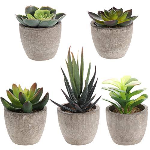 Yardwe 5 Stücke Künstliche Sukkulenten kunstpflanze mit Töpfen Tischdeko Hausgarten Deko