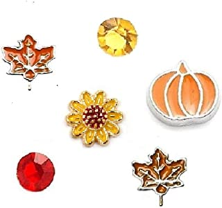 Cherityne Fall/Autumn Themed Set of 6 Floating Charms for Locket Pendants