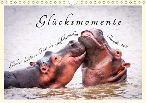 Glücksmomente Glücks-Zitate zu Fotos der großartigen südafrikanischen Tierwelt (Wandkalender 2021 DIN A4 quer)
