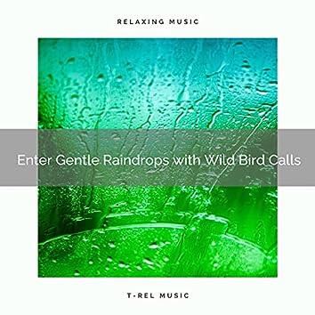 ! ! ! ! ! ! ! ! ! ! Enter Gentle Raindrops with Wild Bird Calls