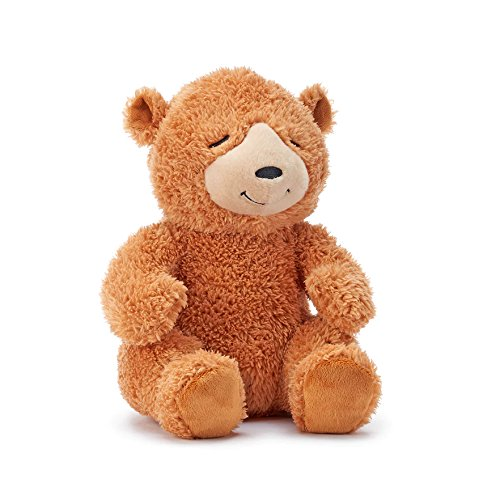 Kohls Cares Bear Plush From Sleep Tight, Sleepy Bears Plush Toy Stuffed Animal