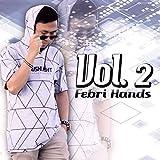 Febri Hands, Vol. 2