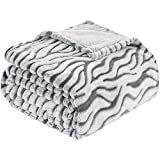 HOMEIDEAS Fleece FlannelSoft Summer Blanket ThrowSize, 61x80Inches Printed Blanket for Couch/Sofa/Bed for All Season, Zebra,Grey