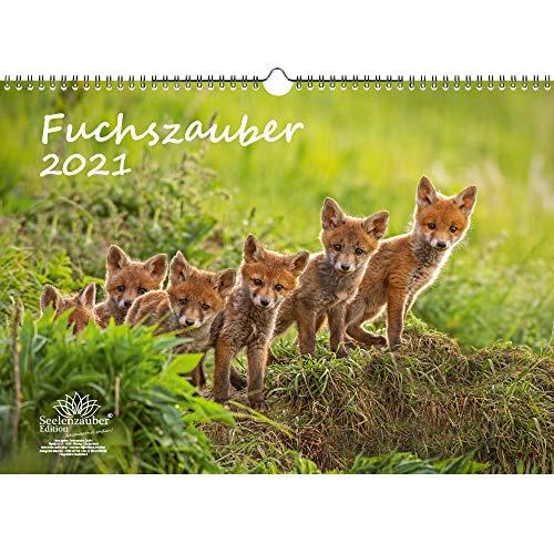 Fuchszauber DIN A3 Kalender für 2021 Fuchs und Füchse - Seelenzauber
