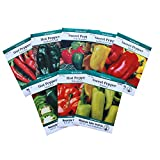 8-Pack Non-GMO Heirloom...image