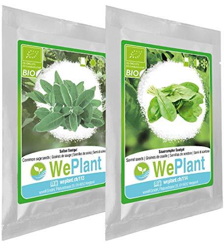 BIO Sauge & Oseille - Graines de plantes aromatiques/Intérieur & Extérieur