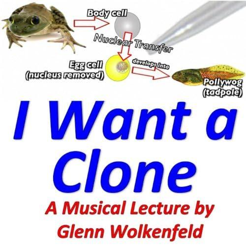 Glenn Wolkenfeld