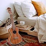 Immagine 1 winzz concerto ukulele migliore selezione
