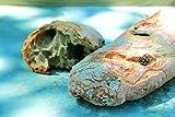 Brot Backmischung – Tomato Olive Bread im Weckglas 640g - 3
