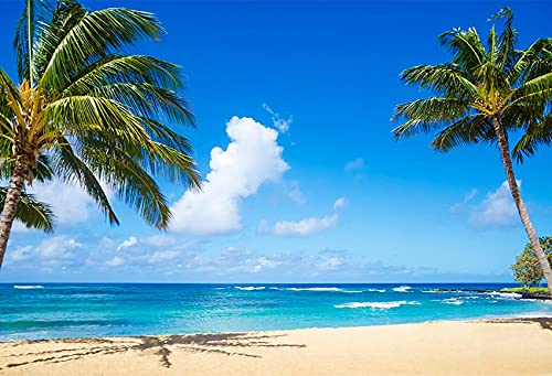 Tropical Beach Photography Background Seaside Summer Wedding Baby Birthday Shower Party Photo Studio Backdrop A35 10x7ft/3x2.2m