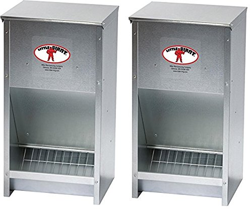 Little Giant 400 oz. Feeder For Poultry