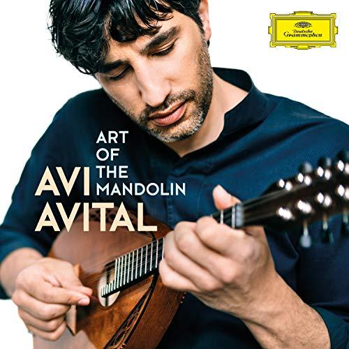 Art of the Mandolin