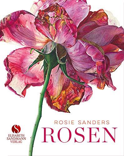 Rosen: Meisterin der Blumenkunst