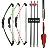 Archery Compound Bow and Arrow Set 12lbs Youth Bow Target Shooting Toy Gift